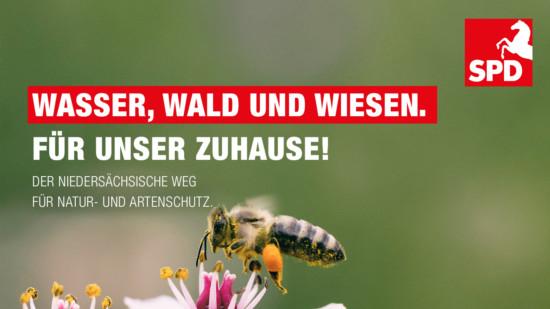 Der Niedersächsische Weg (Symbolbild mit Biene)